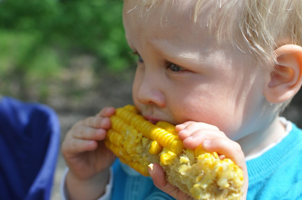 child-eat-corn